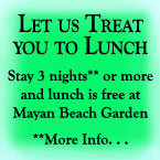 Treat you to Lunch