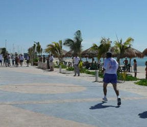 Runners on the Malecon