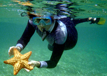 Marcia with starfish